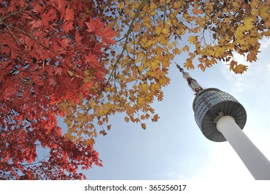 Seoul Tower and red autumn maple leaves at Namsan mountain in South Korea