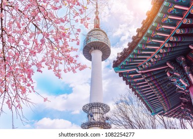 Seoul,South Korea - 7 April 2018 : Cherry blossom in spring and seoul tower in South Korea.