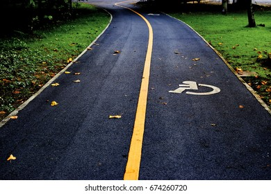 Separate bicycle lane for riding a bike in a park.