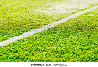 Separation line on soccer field background hd