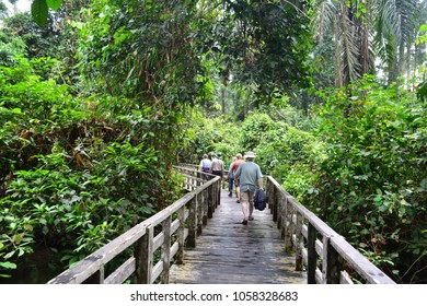 SEPILOK ORANGUTAN CENTRE, MALAYSIA - MAR 26TH, 2018: Unidentified tourists at the Sepilok Orangutan Rehabilitation Centre, in Borneo island, Malaysia, on Mar 26th, 2018