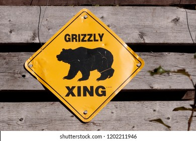 September 04 2018 Haines Aalaska. Grizzly bear crossing sign, in Haines Alaska