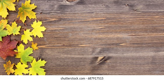 September 1 with autumn leaves on a wooden background. Greeting gift card for the day of knowledge. Hand lettering.