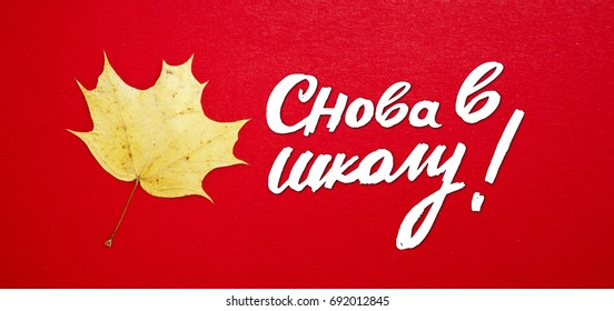 """September 1 with autumn leaves on a colored background and hand lettering """"back to school"""" in russian. Greeting gift card for the day of knowledge."""