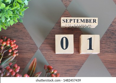September 1. Date of September month. Number Cube with a flower and leaves on Diamond wood table for the background