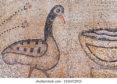 September 14, 2019. Tabgha, Israel. The Church of the Multiplication of the Loaves and Fish. Floor mosaic, details