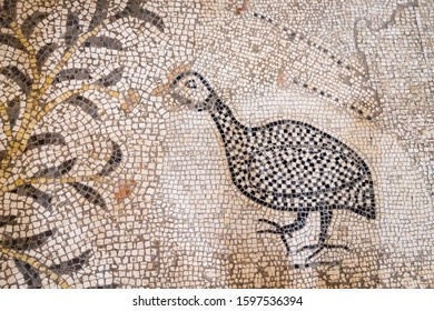 September 14 2019. Tabgha, Israel. The Church of the Multiplication of the Loaves and Fish. Floor mosaic, details