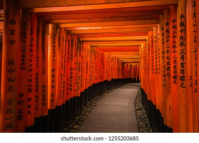 September 2018. Red hall of torii in Fushimi inari temple. Torii with names of corporations, people and organizations. Kyoto. Japan.