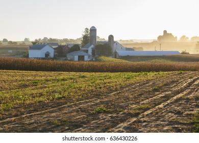 September Morning on the Farm