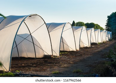 Sequence of greenhouses in a cultivated field