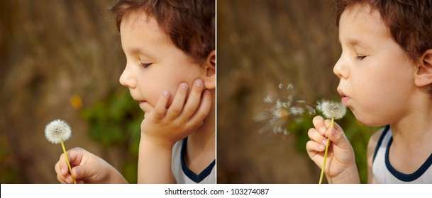 Sequence of images depicting a beautiful child blowing a dandelion