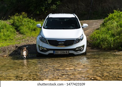 Serbia - 09.21.2018 / Kia Sportage 2.0 CRDI awd or 4x4, white color, crosses the stream ( creeks ), with a very steep approach, and  the hunting dog swim next to him, SUV car in water.