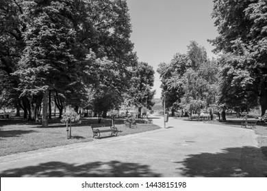Serbia - Veliko Gradiste town - main park view - Black&white
