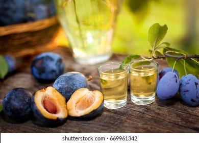 Serbian brand rakia slivovista in shot glasses with plums