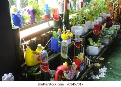 SERDANG, MALAYSIA -DECEMBER 03, 2016: Vegetable planted vertically in recycle plastic bottles container.