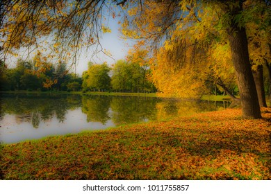 Serene autumn afternoon pond shore