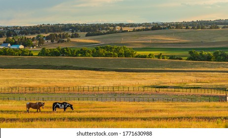 Serene late evening pastoral scene with horses, fencing, pastures, and rolling hills at a Colorado rural farm home near Denver
