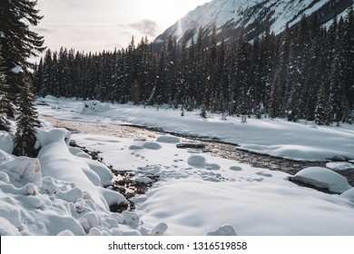 Serene, peaceful morning light winter scene along the Kootenay River in Kootenay National Park British Columbia Canada