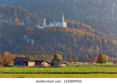 Serene rural landscape with cow sheds in the meadow with the view to Neuschwanstein castle, Bavaria, Germany