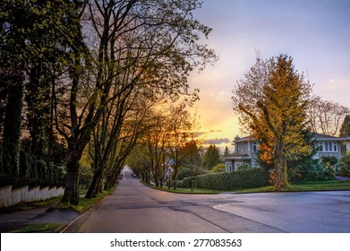 Serene suburban street with houses and golden trees at sunset