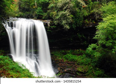 A serene waterfall flows in a lush forest