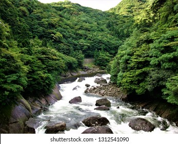 Serenity of green and river in yakushima Japan Jun 25th 2010