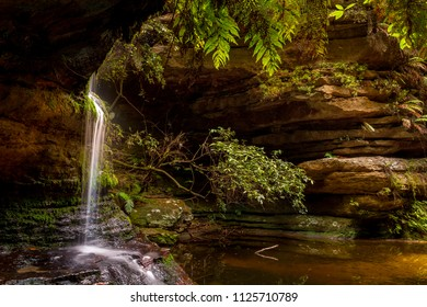 Serenity at a little waterfall at Pool of Siloam with sunlight backlighting lush ferns and leaves, Blue Mountains Australia