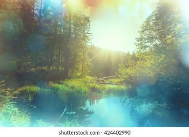 Serenity misty lake