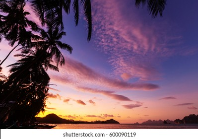 Serenity tropical beach, Instagram filter