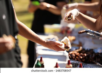 Series of bbq cookout grill images depicting sausages, steak and fried onion sandwiches. Sausage sizzle and snag sangas.