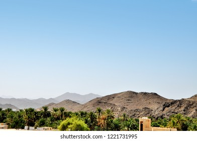 A series of hills and dates trees outside the Muscat city