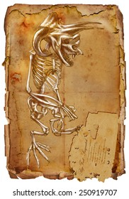Series of legendary animals and monsters (skeleton): BIGFOOT. An hand drawn full sized illustration (Original). Hand drawing on old vintage paper with text. Background: slightly blurry, Lines: sharp.