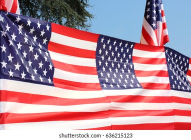 Series of many American flags with blue sky and the branches of a tree