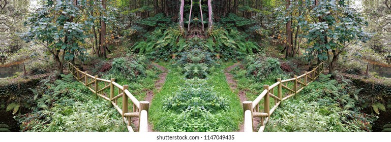 Series of symmetrical and panoramic photographs of forest landscapes, walkways, in Galicia, Spain, a walk in the forest,