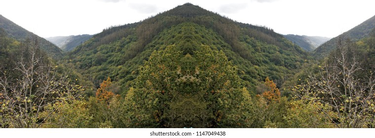 Series of symmetrical and panoramic photographs of forest landscapes, natural park of Fragas do Eume, in Galicia, Spain,