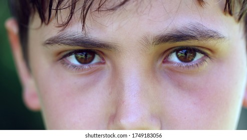 Serious angry child frowning to camera. Close-up of young boy staring macro eyes detail closeup
