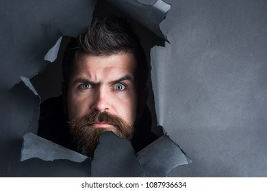 Serious bearded man peeping through black paper hole. Attractive man with beard&mustache breaking paper gazing seriously. Male head making hole in paper wall. Season sales, discount, sale. Copy space.