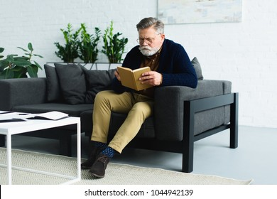 serious bearded senior man sitting on sofa and reading book at home