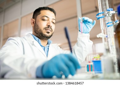 Serious busy young middle-eastern scientist in sterile gloves sitting at desk and holding test tube with liquid while making chemical experiment in laboratory