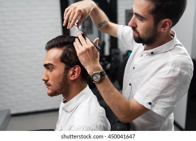 The serious client is sitting in the salon and professional hairstylist is cutting the client's hair with scissors and brush
