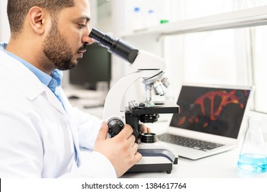 Serious concentrated young Arabian microbiologist in white coat sitting at table with laptop and flask and studying organism using microscope