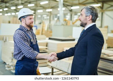 Serious confident handsome gray-haired investor in suit making handshake with young engineer while concluding deal with large furniture factory
