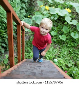 Serious cute 3-4 years old boy climbing up with the ladder, he is determined and concentrated, emotion portrait, education and self-development concept, summer outdoor