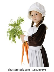 A serious elementary Pilgrim carrying fresh carrots for the first thanksgiving.  On a white background.