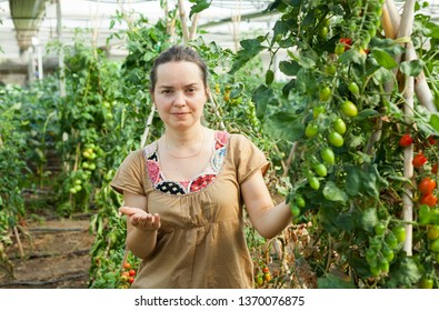 Serious female horticulturist  attentively looking  tomatoes seedlings in  hothouse