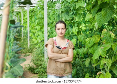 Serious female horticulturist standing near   pea and soy seedlings in  hothouse