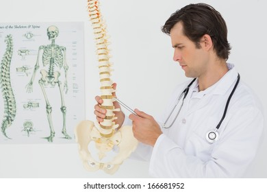 Serious male doctor looking at skeleton model in the medical office