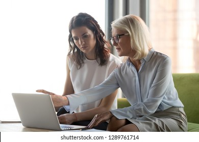 Serious middle aged executive manager explaining colleague online work together pointing at laptop, mature older financial advisor insurer or bank worker making offer to client, advisory services
