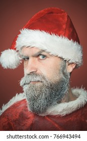 Serious Santa Claus. Christmas, New Year and celebration concept - Christmas man with beard. Santa Claus hipster with frozen beard in red hat isolated on red background.