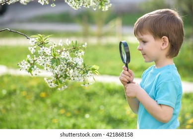 Serious and smiling cute kid guy exploring the environment with a magnifying glass